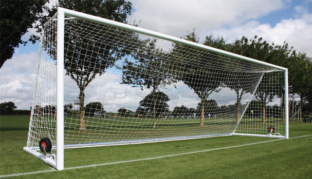 Integrally Weighted Goal Nets