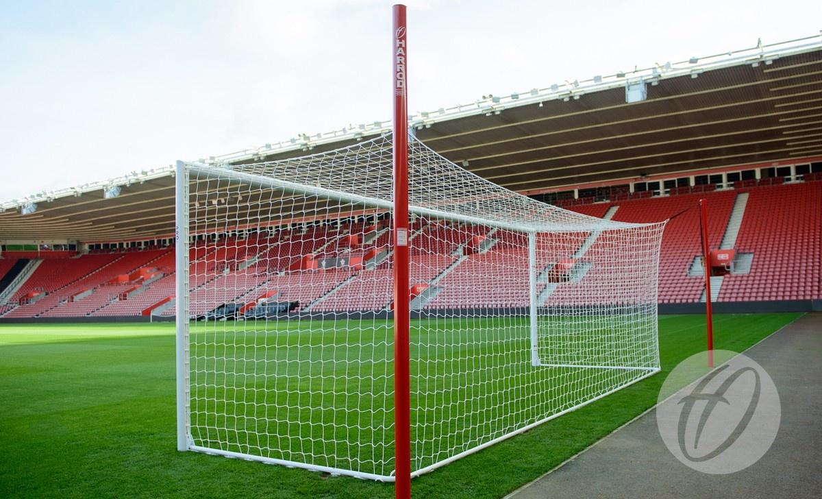 New Pro Stadium Goal